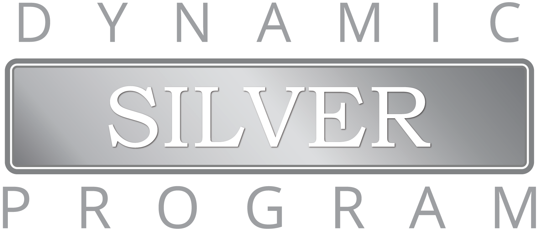 Logo Dynamic Silver Series